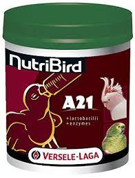 Nutribird A21 nourissage des oisillons