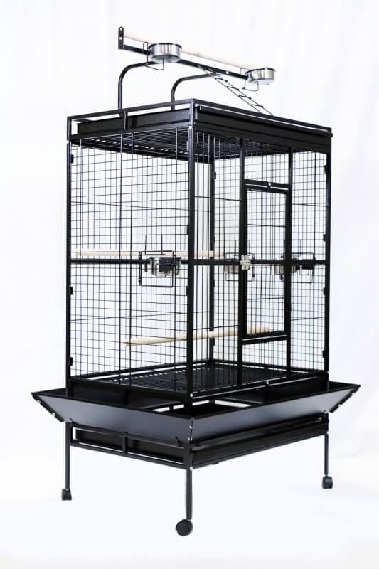 10 conseils pour choisir la cage de sa perruche